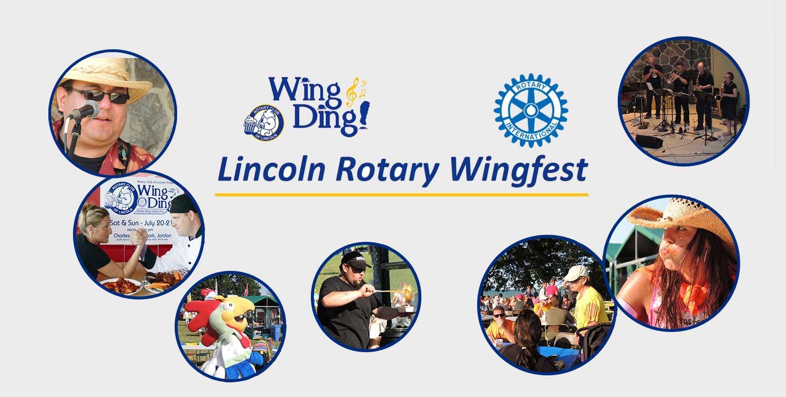 WingDing-main